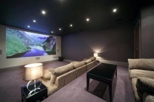 Somerset House cinema room (2)